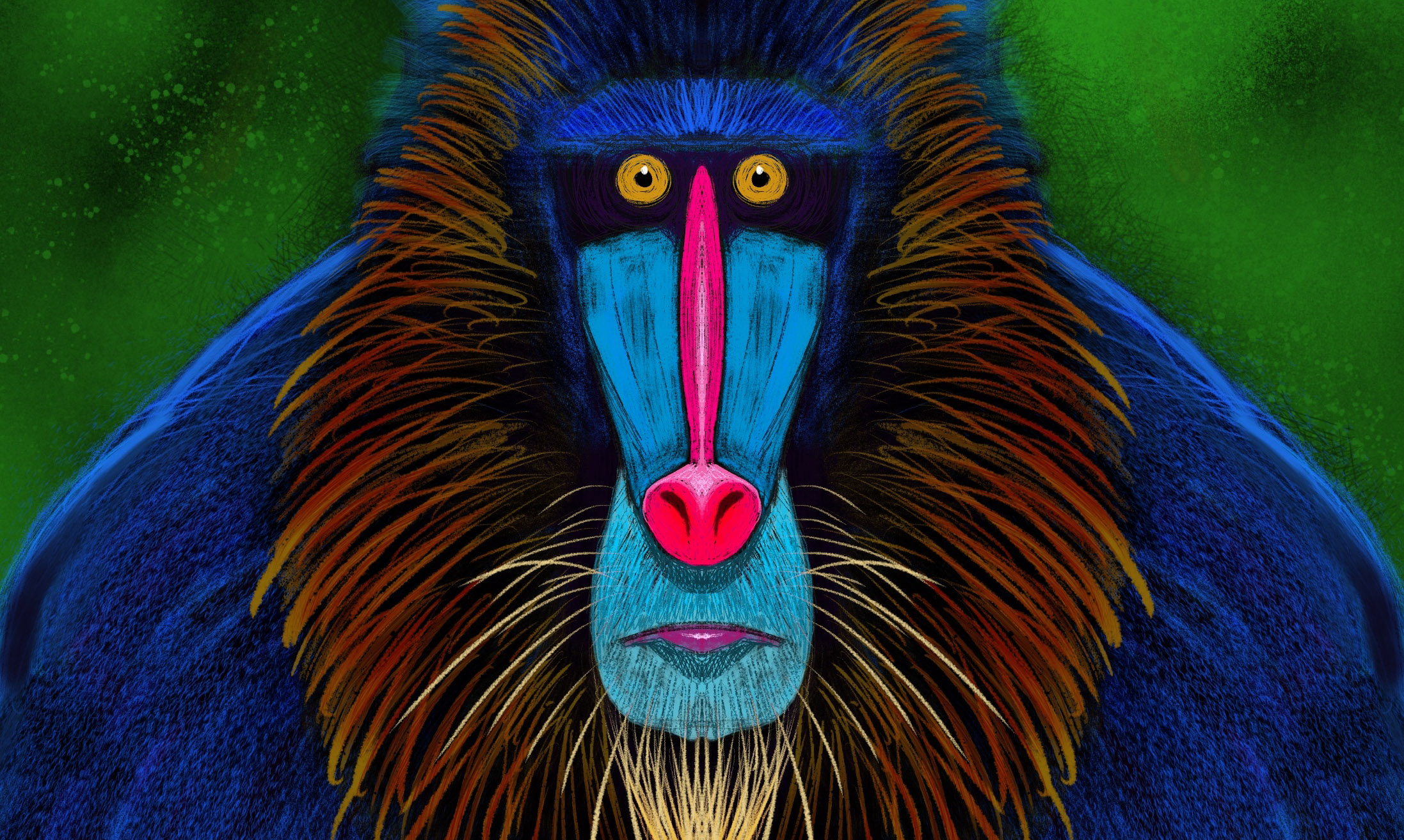 Symmetricanimals – Mandrill